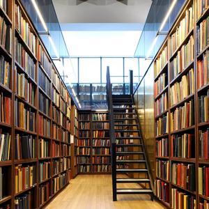 Библиотеки Балея
